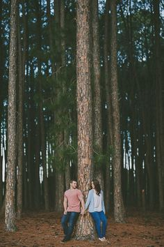 Erica and Craig's Romantic Pine Forest Engagement Photos