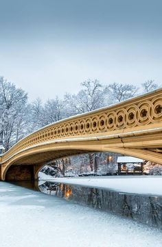 Bow Bridge in Central Park, New York City, USA