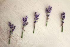 #Simpel, #corsages met #lavendel en een stukje #raffia.