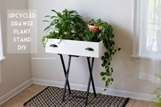 What is a plant stand? Plant stand is an ornamental element that helps you display your interior or outdoor plants on a beautiful platform. Plants stands come in a range of sizes, forms, . Read Best Plant Stand Ideas for Your Own Forest Indoor Window Plants, Indoor Plant Shelves, Stand Design, Display Design, Recycler Diy, Unique Bedside Tables, Craft Paint Storage, Ikea Ps 2014, Swivel Tv Stand
