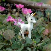 Unicorn Pixie Woman Pond Firefly Framed Art Print Picture Photo 9x7 Inch