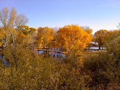 Passport America Site Seers: Pato Blanco Lakes #RV Resort, Benson, AZ - Passport America Participating Park