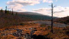 Urho Kekkonen National Park (Finnish: Urho Kekkosen kansallispuisto) is a national park in Lapland, Finland, situated in area of municipalities of Savukoski,. Finnish Words, Best Cities, Finland, Trek, Paths, National Parks, Hiking, Autumn, Landscape