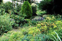 Jardim Primrose Hill em Lucan, condado de Dublin, Irlanda. O jardim de 2,5 hectares foi formado ao longo dos últimos 40 anos por Robin Hall e ultimamente por Cicely Hall, e alcançou o status de um jardim botânico. A coleção de plantas foi criada a partir de jardins do passado e do presente. É um jardim cheio de plantas coloridas com muitos adoráveis cultivares antigos.