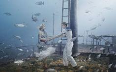 "MOHAWK PROJECT ""DANCING WITH THE FISH"" 