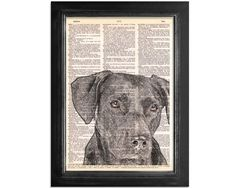 Mans Best Friend The Black Lab - Printed on Vintage Recycled Dictionary Paper - 8x10.5 - Dictionary Art Print on dictionary book paper