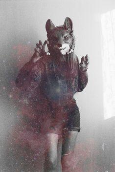 Yasya Fogelgardt! fox in a space | Flickr - Photo Sharing!