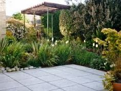 architctural planting - Google Search