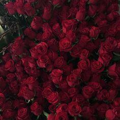 Пупсики и розы. - Пупсята