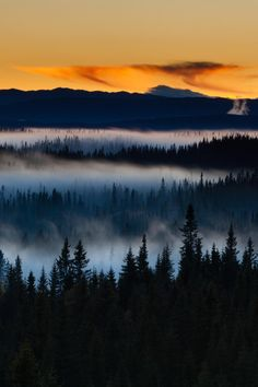 Fog by Lars Øverbø ~ love this sunset combined with the fog