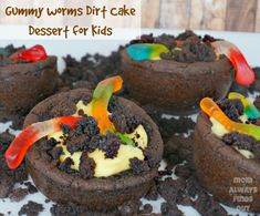 Who doesn't like a good Dirt Cake, & now you can have them in Edible Bowls!!  No way can you go wrong at a outside kids birthday party!  That's my plan. :)