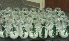 Made 90 of these Mason jar luminaries w/ Epsom Salt for walkways @ church this Christmas
