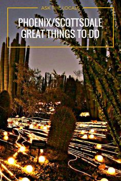 Longtime Scottsdale, Arizona resident, Mike Shubic of shares his favorite things to do in the Phoenix and Scottsdale areas. Arizona Road Trip, Arizona Travel, Road Trip Usa, Usa Roadtrip, Scotsdale Arizona, Phoenix Things To Do, Pheonix Arizona, Vacation Trips, Italy Vacation