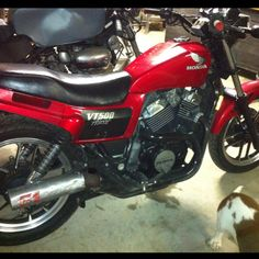 My 1984 Honda Ascot VT500 !! Mine!