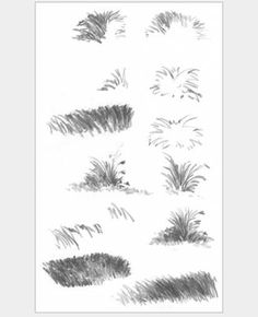 Penciled grass textures