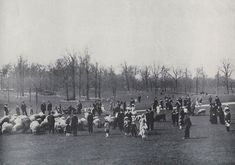Children and adults with herd of sheep in the Sheep Meadow in Central Park, New York City, ca. 1900-1910. (Courtesy NYC Municipal Archives) #