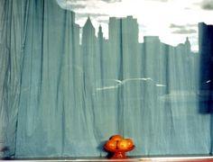 Untitled, New York #18  Mitch Epstein