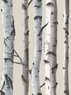 Silver Birch Wallpaper! - interesting. Another alternative to free hand painting, stencils or wall decal.