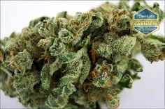 Bruce Banner | Medical Marijuana Strains & Dispensaries