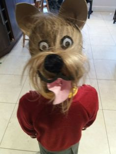 The Hottest Hairstyles for Your Dogs Crazy Hair Day Girls, Crazy Hair For Kids, Crazy Hair Day At School, Days For Girls, Crazy Hair Days, School Fun, Little Girl Hairstyles, Cute Hairstyles, Wacky Hair Days