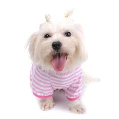 Jumpsuits & Rompers Cute Dog Costume Soft Pet Clothes Bear Animal Puppy Jumper Cat Romper Warm Christmas Theme Jumpsuit Coat Clothing For Pet Dog Clearance Price