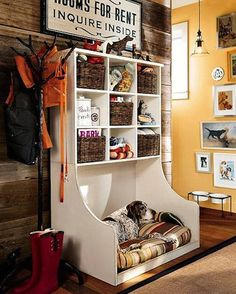 Now THAT'S an organized puppy! :)