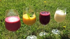 Fire friske smoothies - Bringebærsmoothie, mangosmoothie, blåbærsmoothie og sitron- og limesmoothie gir ny energi. - Foto: Agnete Daae-Qvale Holmemo / NRK Cold Drinks, Alcoholic Drinks, Beverages, Smoothies, Smoothie Recipes, Cooking Recipes, Healthy Recipes, Healthy Food, Frisk