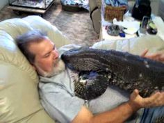She Walked In On Her Husband Doing THIS! I've Never Seen ANYTHING Like It! : PetFlow Blog – The most interesting news for pet parents around the world. | Pet News that interests you! Please SHARE with friends and family!