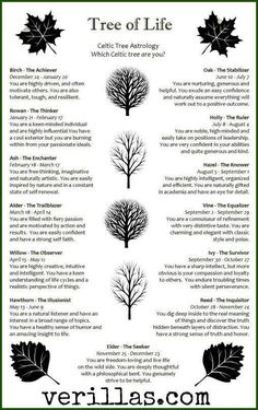 wicca celtic zodiac garden tree birth # Celtic Trees and Personality Traits. I am not sure that this is traditional, but it does seem to be accurate. Magick, Witchcraft, Tarot, Celtic Mythology, Book Of Shadows, Occult, New Age, Mystic, Tree Of Life Meaning
