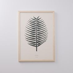 Bring the outdoors in with this spiny cocos nucifera botanical accent, reminiscent of plant pressings from childhood. Make it a focal point by pairing with its Split Leaf counterpart. This watercolor print comes to us from Danish art-duo By Garmi. Printed on cream-colored cardstock. Framed in Portland.