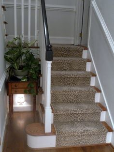 New Totally Free leopard Carpet Stairs Ideas One of the fastest approaches to revamp your tired old staircase would be to cover it with carpet. Leopard Carpet, Grey Carpet, Staircase Runner, Stair Runners, Barefoot In The Park, Stanton Carpet, House Stairs, Entryway Stairs, Ideas