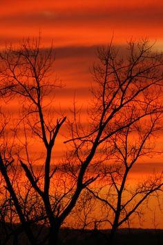Orange Sunset by Bay Bridge Photos.