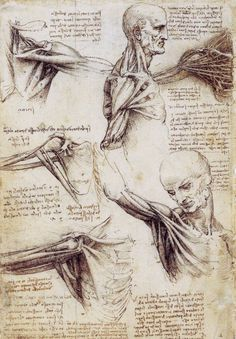 Leonardo Da Vinci - Curiosidades y dibujos