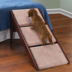 Pet Ramp And Staircase. I need someone to make one of these for my short-legged daxies!