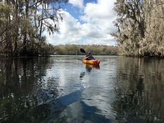Our Roadtreking gathering at Florida's Manatee Springs State Park had us all singing that line from Steven Foster's 1851 song a lot this past week as ...