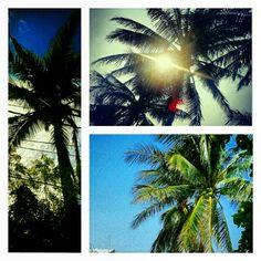 #webstagram #instagram #ignation #instagood #Photooftheday #Picoftheday #bestpicture #art #travel #streetphotography #bestpicofthemonth #instagramers #instamood #instadaily #LoadnVote #Instagramhub #amor #igers #igersmexico #snapgrams #mextagram #statigram #bestinstagramart #gang_family #istmo #Mytravelgram #oaxaca  #beach #MTG9 - @villalobos1910- #webstagram