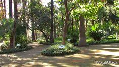 Puedes conocer la variedad de especies de árboles y plantas gracias a los carteles informativos.