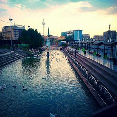 Alqami River waters net albumin in which each patient heals and recovers