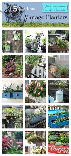 World's coolest vintage planter ideas! -I love the old jug! Thats what I want my lemon tree in