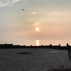 Down at Whitstable to watch the sunset. Beautiful!  #peaceful #seaside #kent #sunset #evening
