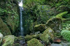 https://flic.kr/p/NuvZYr | Ribeira da Camisa | Lombada - Madeira Island discovermadeira.blogspot.pt