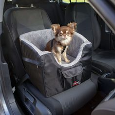 Köp Bilstol för Hund till din hund från Tinybuddy.se