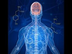 Margie's Journal: Updated Parkinson's Information: New Protein Discovery Could Mean New Treatment For. Voice Therapy, Speech Therapy Games, Health Talk, Health And Wellness, Lewy Body Dementia, Disease Symptoms, Parkinson's Disease, Human Anatomy And Physiology, Central Nervous System