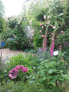 Garden Impressions 2