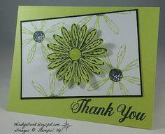 Thank You Lemon Lime Daisies