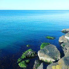 #portarlington #geelong #bellarinepeninsula #bellarine #water #sea #ocean #bluewater #beautiful #peaceful #sealife #beautifulaustralia #australia #geographic #geografia #nature #naturelovers #horizon #fishing #rocks #saturday #withfamily #photography #landscape #instagramphoto #photographer #yoorirosephotography #yoorirose by yoorirose http://ift.tt/1JO3Y6G