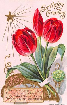 Birthday Greeting Postcard May Emerald Birthstone and Tulip Flowers~108449 #Birthday
