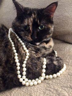 Pretty in pearls. Zsazsabellagio.com