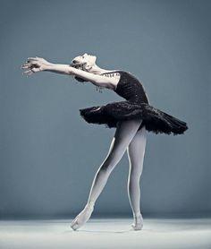 Sarah Lamb - Ballet, балет, Ballett, Bailarina, Ballerina, Балерина, Ballarina, Dancer, Dance, Danse, Danza, Танцуйте, Dancing