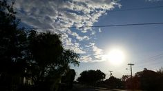 Beautiful morning sun even though it was cold and stingy Boca Raton Florida  (12/2014 VPW)